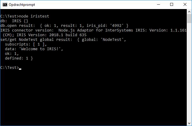 IRIS Node.js connector test script