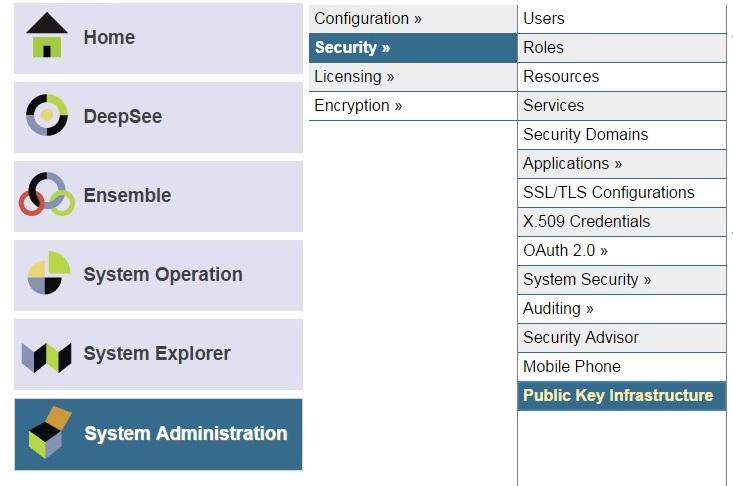 Creating SSL-Enabled Mirror Using Public Key Infrastructure (PKI) |