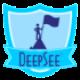 DeepSee Reporter
